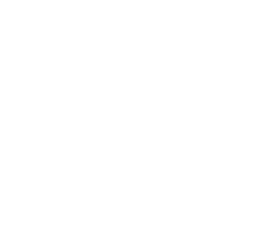 NS Optimum OnlineStore